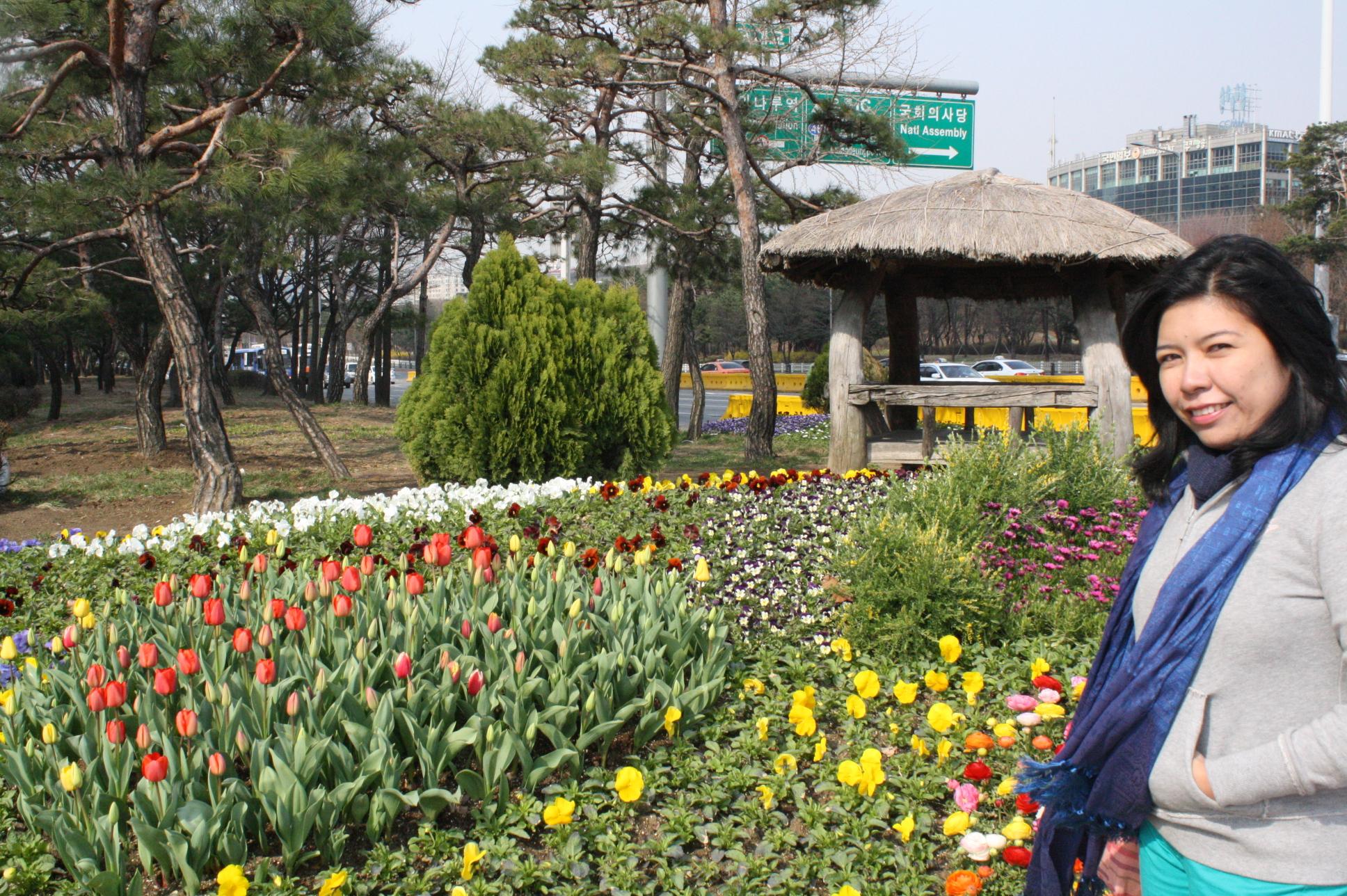 Spring Seoul