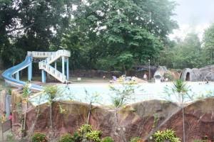 The safari pool.