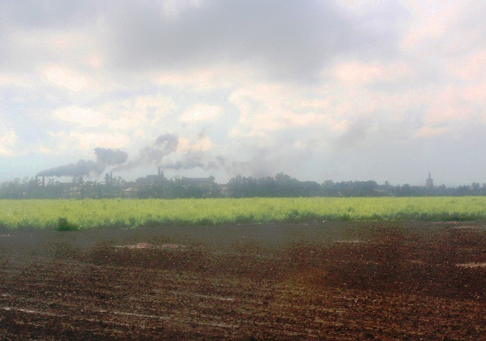 A sugar factory from afar, operating during milling season.